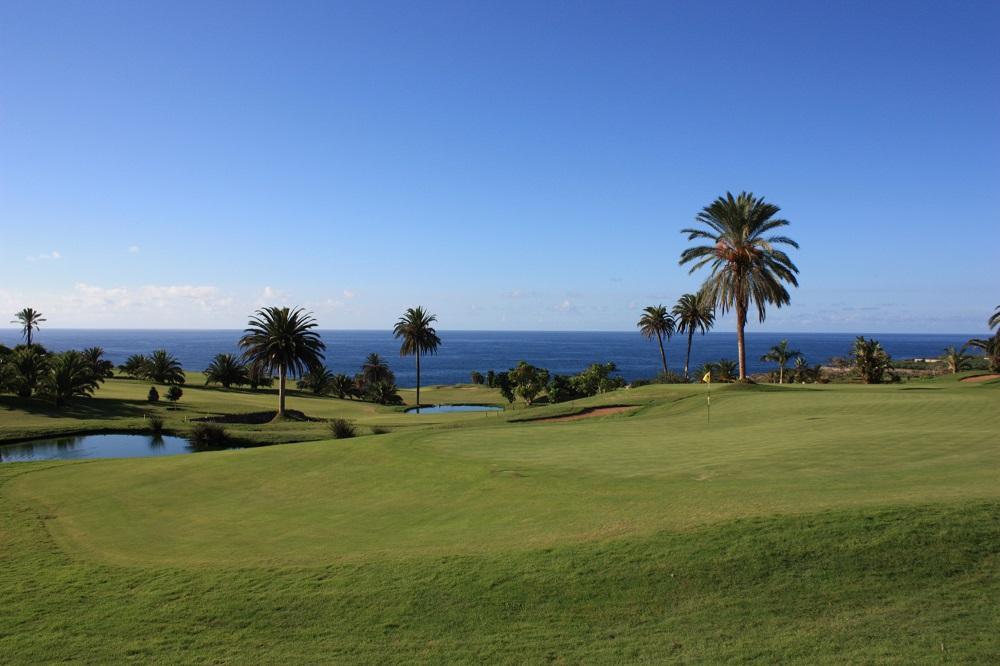 Les palmiers du golf de Buenavista.