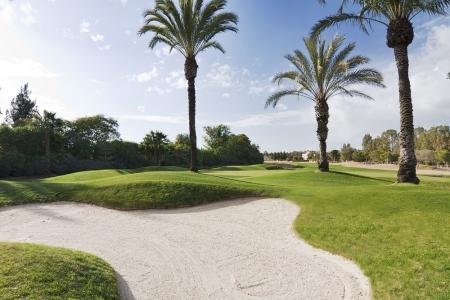 Bunker et palmiers entourant le green du Real golf club de Sevilla