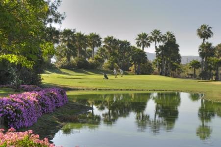 Green défendu par un étang sur le golf Las Americas
