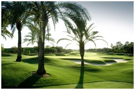 Soleil se couchant sur le Real golf club de Sevilla