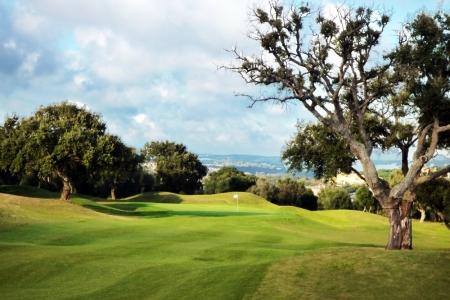Fairway et green au milieu des arbres sur le golf de San Roque