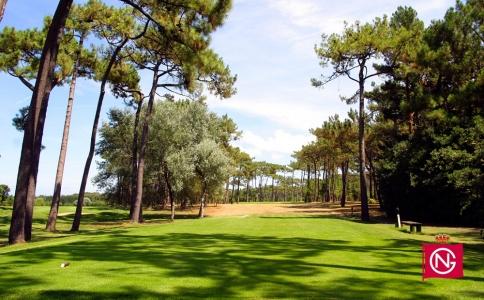 Départ entre les arbres sur le trou numéro 17 du golf Neguri