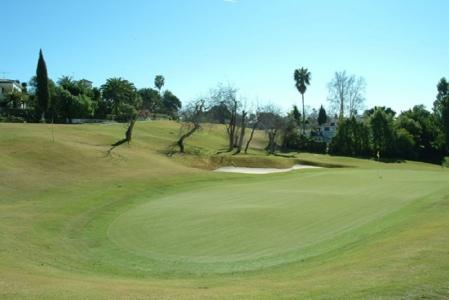 Large green du golf Guadalmina