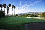 Le parcours, le green et les palmiers du golff